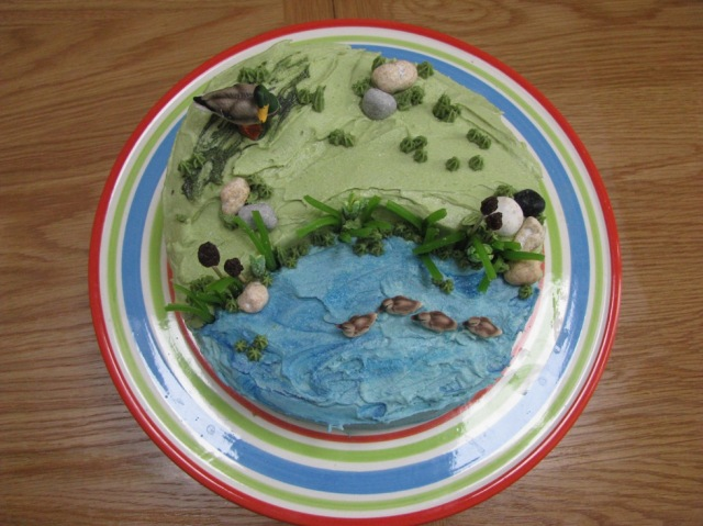 Birds eye view, wetlands cake © The House of Jones